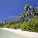 Perfect beach on the north side of Wunga Island lagoon.