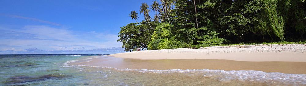 Pulau-musi-nias