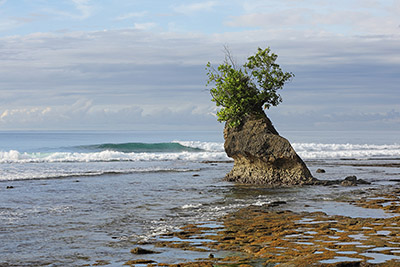 South-nias-coast-w